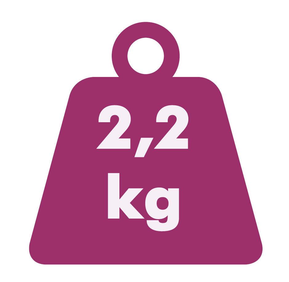 KV-4126-Vortragekreuz-2-2-kg